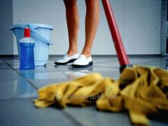 General cleaning of premises