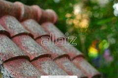 Services in repair of a roof