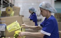 Требуется разнорабочий на упаковку продуктов в Польшу. Работа за границей.