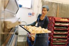 Рабочий в пекарню в Польшу. Работа за границей.