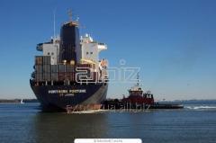 Servicii de organizare a importului