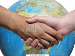 Оформление деклараций на товары. Консультации по операциям с импортным налоговым кредитом по НДС