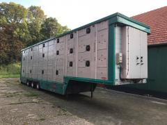 International transportation of live animals by