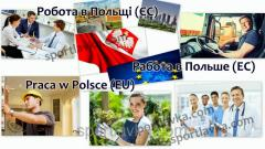 Работа в Евросоюзе