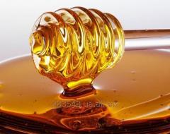 Закупка меда