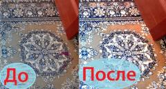 Dry-cleaner of carpets, carpets and carpets