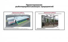 Design of the fish processing enterprises (fish