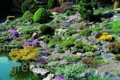 Beautification of rock gardens