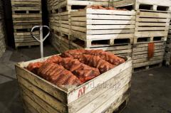 Construction of vegetable store for the storage of