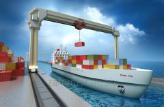 Sea container transportation of cargo