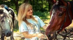 Репортажная фотосъемка с лошадью