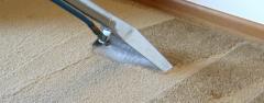 Химчистка ковров,ковровых покрытий