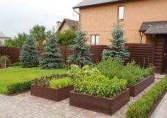 Beautification of garden