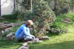 Школа садовников, курсы ландшафтного дизайна