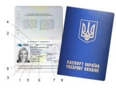 Registration of the international passpor