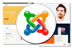 The website on Joomla