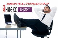 Let's create the company in Yandeks Direk
