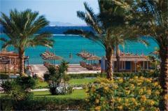 Amwaj Oyoun Hotel & Resort, Шарм Эль Шейх, Египет, 04.04.17