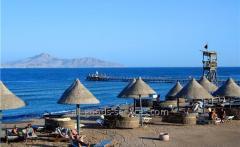 Fortuna Aqua Park Resort Hrg, Хургада, Египет, 20.02.17