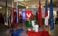 Выставочная деятельность , организация , проведение конференций