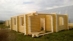 Строительство дома из дерева 002