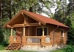 Строительство дома из дерева 20