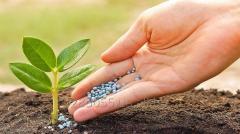 Перевозка удобрений (в т.ч. минеральных) недорого
