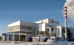 Разработка бизнес-планов ТЭС, работающих на биомассе