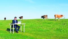Разработка стратегии выхода на сельскохозяйственный рынок Украины