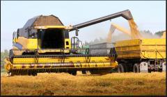 Transportation of cereal crops