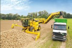 Transportation of bulk cargo