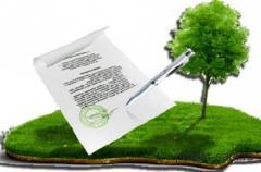 Получить кадастровый номер на землю, земельный участок в Днепре и Днепропетровской области