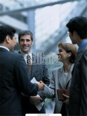 Full legal maintenance of activity of Ltd company