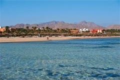 Amwaj Oyoun Hotel & Resort, Sharm