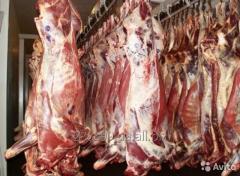 Покупаем говядину на экспорт в больших обьемах
