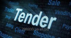 Организация и проведение торгов и тендеров