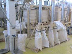 Processing of wheat in flour