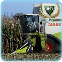 Уборка урожая кукурузы комбайном