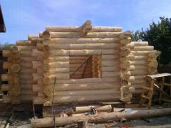 Construction of saunas