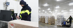 Organización de logística de almacén