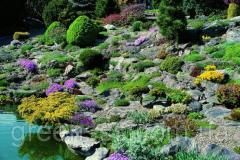 Care services garden