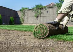 Подготовка участка и укладка рулонного газона