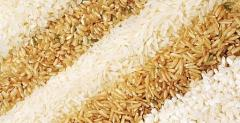 Закупка риса