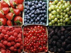 Свежые ягоды (чернику, малину, вишню, бруснику, ежевику и другие)