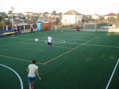 Строительство и обустройство футбольных полей