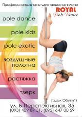 Фитнес и акробатика на пилоне,пол дэнс