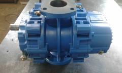 Repair of the rotor RBS (ROBUSCHI) compressors