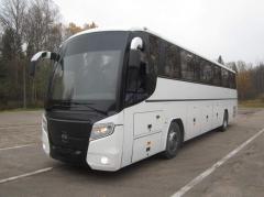 КИЕВ-ПРАГА. Комфортные пассажирские перевозки Киев-Европа.