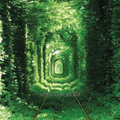 10 Western Wonders of Ukraine!