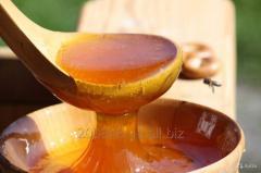 Купуємо сояшниковий мед